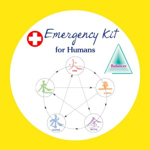 Emergency Kit for Humans