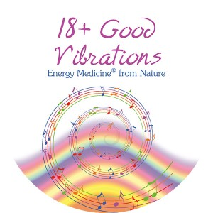 18 Good Vibrations Booklet