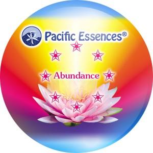 Abundance Essence