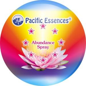 Abundance Spray
