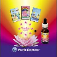 Abundance Cards + Abundance Essence