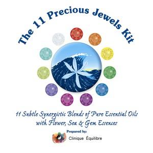 11 Precious Jewels Kit