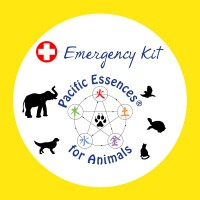 Emergency Kit for Animals