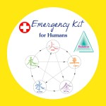 Emergency Kit for Humans