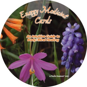 Energy Medicine Cards