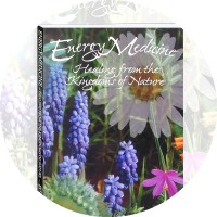Energy Medicine - Healing from the Kingdoms of Nature