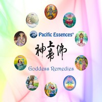 Goddess Remedies Kit (all 10)