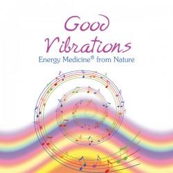 The 18+ Good Vibrations (21)