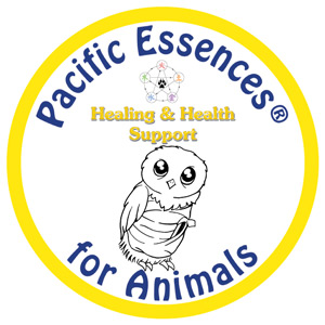 Healing & Health Support for Animals