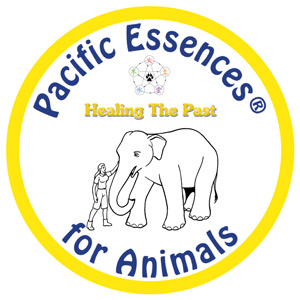 Healing the Past for Animals