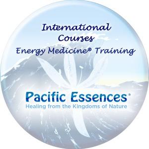 International Courses