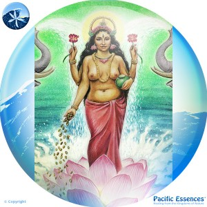 Pacific Essences
