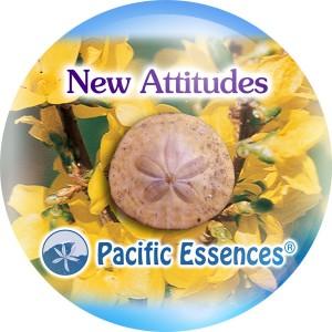 New Attitudes
