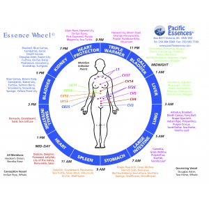 Essence Wheel